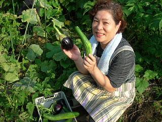 野菜の収穫_e0109554_23195729.jpg