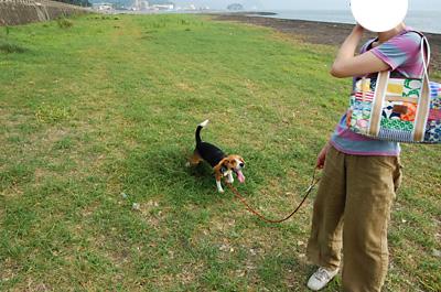 富士の裾野へ行く_b0035072_19504481.jpg