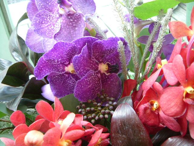 オークリーフ(赤い花)_f0049672_11175468.jpg