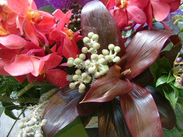 オークリーフ(赤い花)_f0049672_11192538.jpg