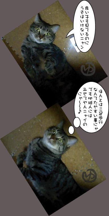 c0012445_12533126.jpg