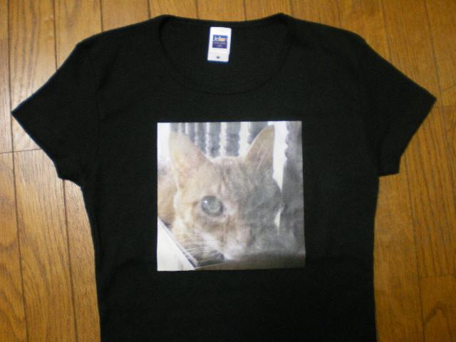 ネコTシャツ_c0118352_23572774.jpg