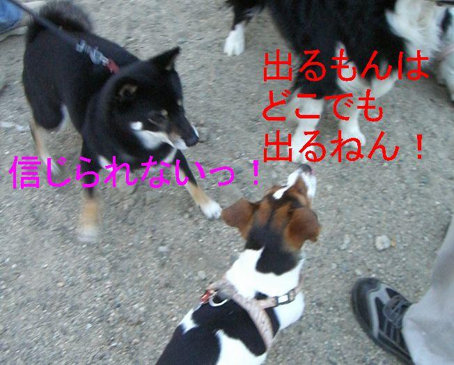 f0053952_17575787.jpg