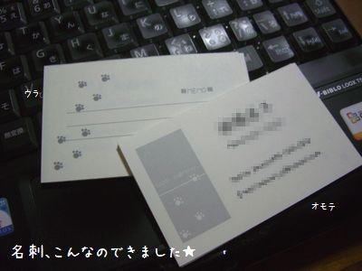 b0000885_21163367.jpg