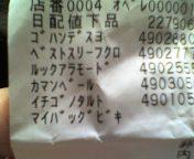 c0071003_1372776.jpg
