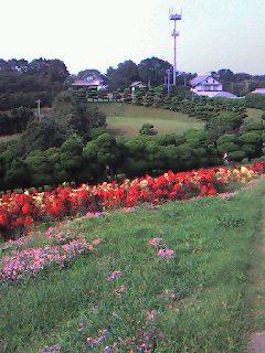 本日の1年生遠足は能古島へ!_d0116009_9405440.jpg