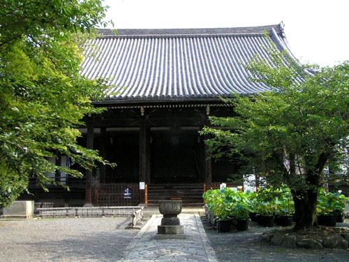 立本寺のハス_e0048413_20415944.jpg