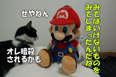 b0041182_851528.jpg