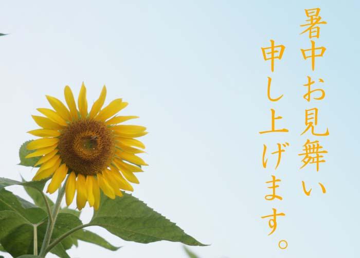 b0089483_7421170.jpg