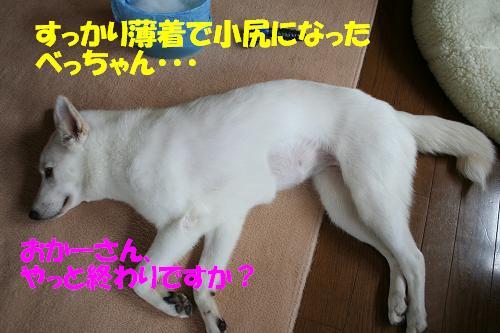 f0121712_16315981.jpg
