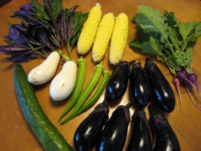 梅雨が明け、本格的な野菜バブル到来!_e0121558_824517.jpg