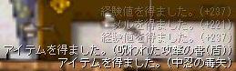 e0055592_1145629.jpg