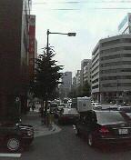 仕事中にプチ「東京みかん」。_d0002395_21576100.jpg