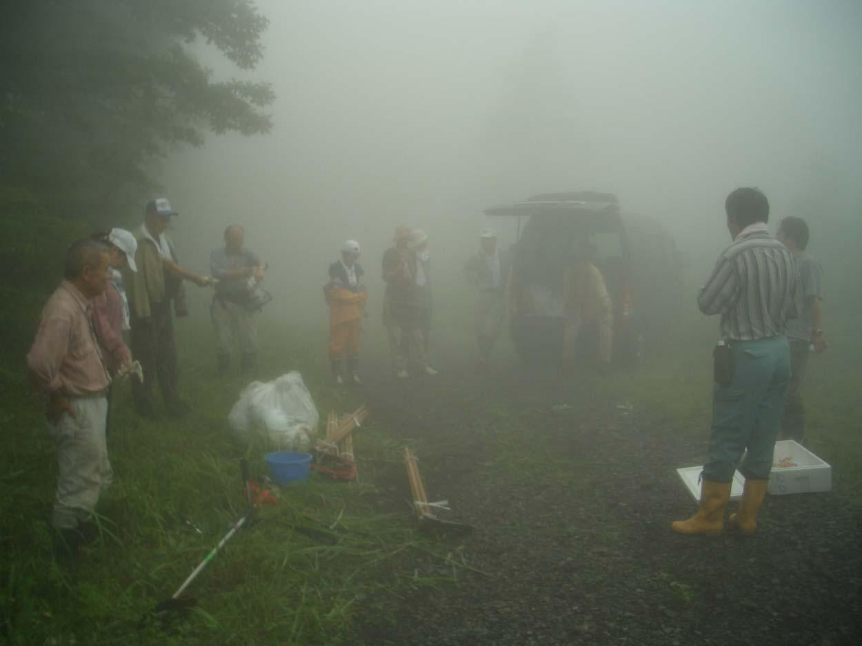 富士山で下草刈り_f0141310_2322031.jpg