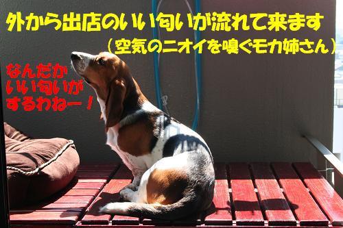 f0121712_15295181.jpg