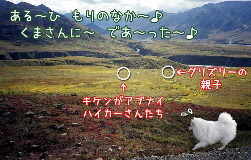 旅するクローカ その44_c0062832_1593873.jpg