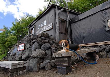 富士山のハナちゃん その2_a0070350_20294875.jpg