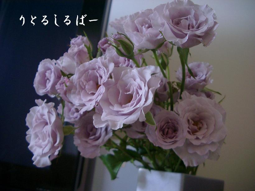 f0145099_11223318.jpg