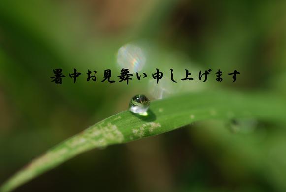 f0135123_205730.jpg