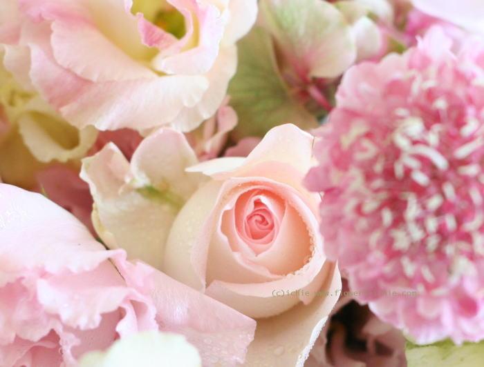 シェ松尾天王洲倶楽部さまの装花 夏のピンク_a0042928_2394454.jpg