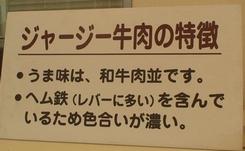 夢旅・岡山・エピソード-Ⅱ_d0083265_22121618.jpg