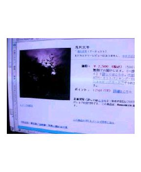 b0098184_2324297.jpg