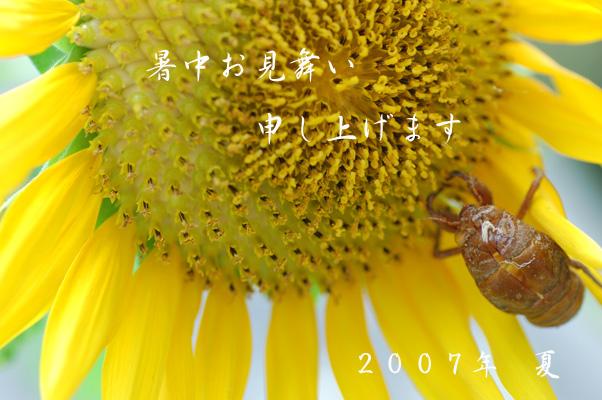 b0026904_20133193.jpg