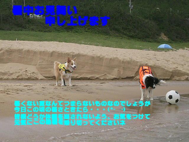 c0012205_16583862.jpg