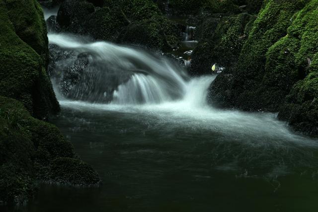 渓流の小さな滝_d0074828_005419.jpg