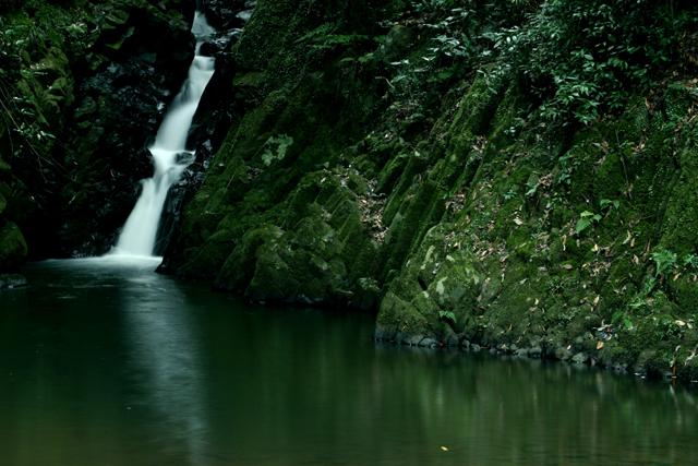 渓流の小さな滝_d0074828_02220.jpg