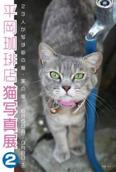 平岡珈琲店 猫写真展2_d0096837_22445224.jpg