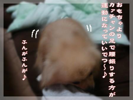 b0078073_21282418.jpg
