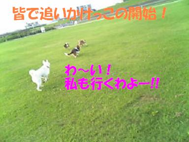 f0121712_149426.jpg