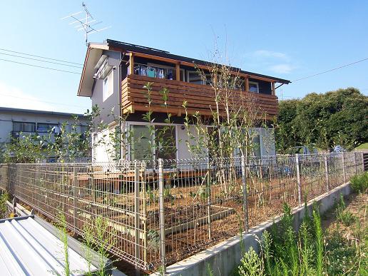 小砂の家に植栽が入りました。2007/8/8_a0039934_18485014.jpg