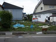 安平町追分 売土地 新登場!!_c0126874_1322119.jpg