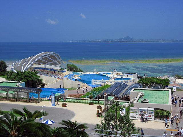 沖縄旅行 5日目、7月29日 美ら海水族館_b0042282_22311421.jpg