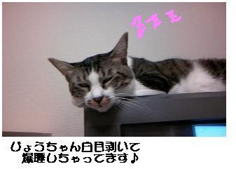 b0022595_18484911.jpg