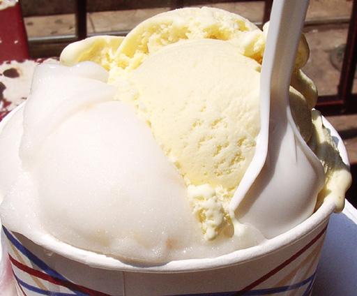 チャイナタウンの超老舗アイスクリーム屋さん Ice Cream Factory_b0007805_9443589.jpg