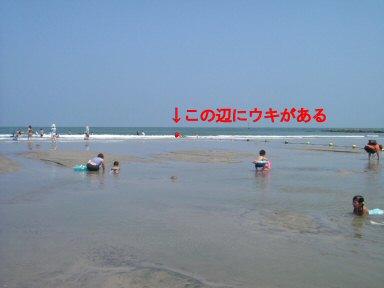 c0014187_15335932.jpg