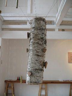 290)②テンポラリー 「村岸宏昭記録展 ー木は水を運んでいる」_f0126829_1482692.jpg