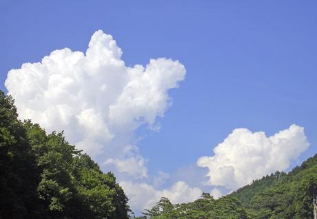 8月10日 吹き割りの滝_a0001354_22202721.jpg