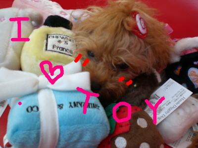 おもちゃだーいすきっ♡_b0084929_2184153.jpg