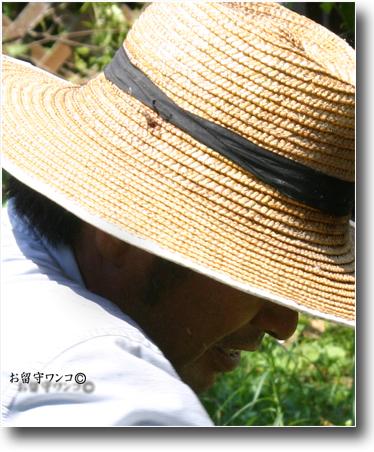 f0111147_9274644.jpg