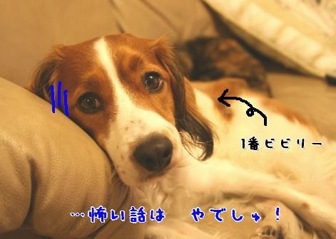 d0013149_2133683.jpg