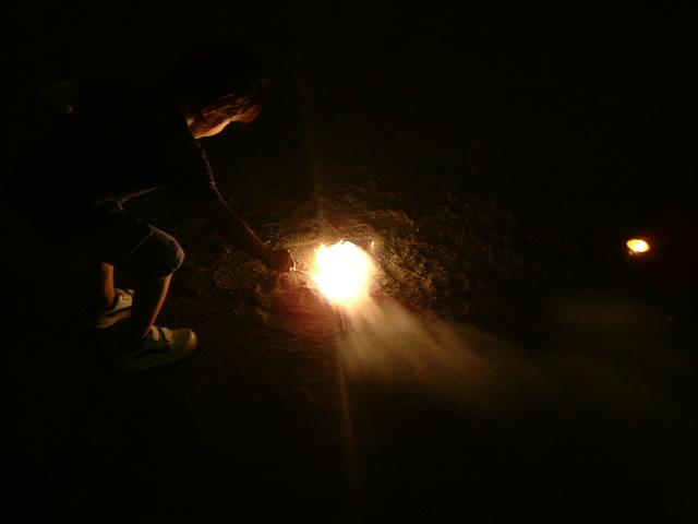 オークリーフ(花火の夜)_f0049672_13362158.jpg