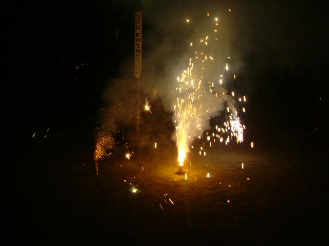 オークリーフ(花火の夜)_f0049672_13433859.jpg