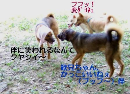 b0087400_0115491.jpg