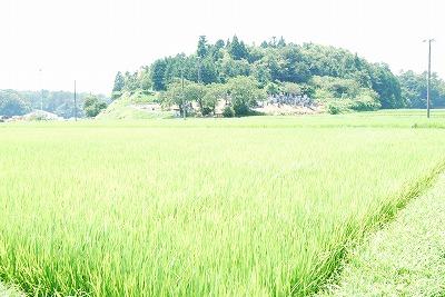 福島へ墓参り_c0124100_22315935.jpg