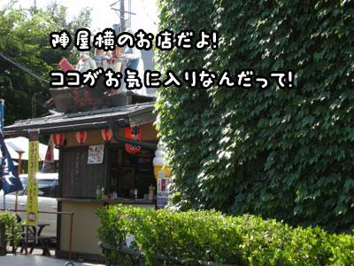 f0129214_23293351.jpg