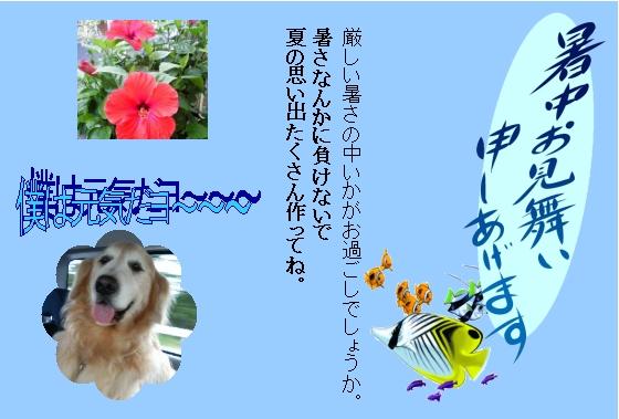 b0087847_1163629.jpg